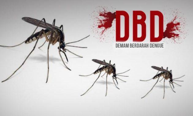 Penanganan Demam Berdarah Dengue Pada Anak