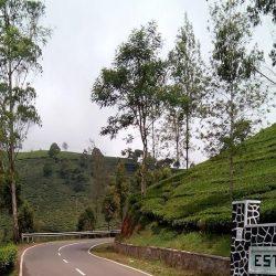 5 Tempat Wisata Alam Memukau di Bandung, Mampir Yuk!